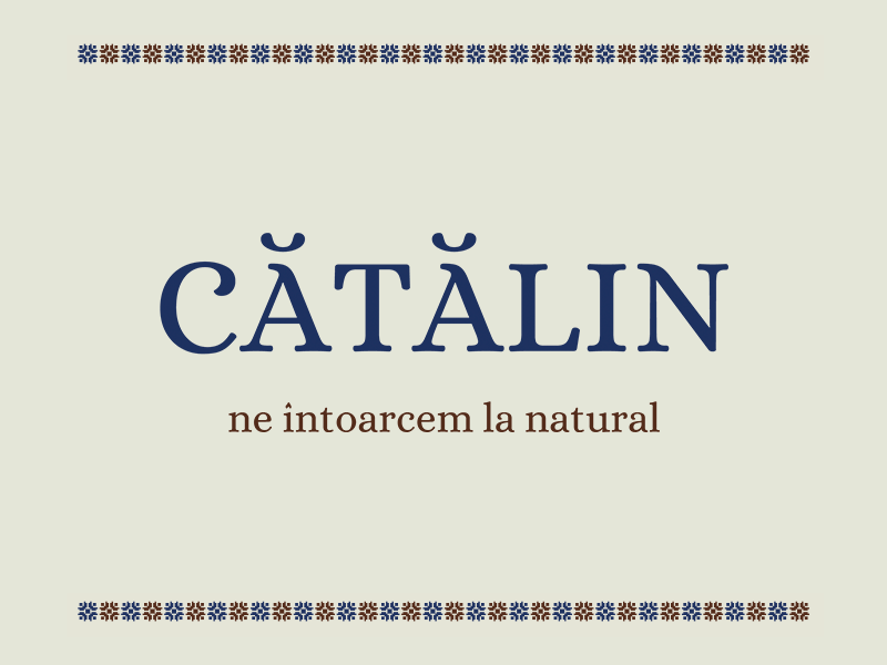 Catalin Bakery